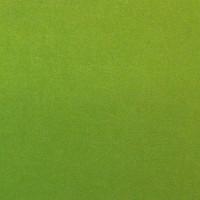 Vert n°7
