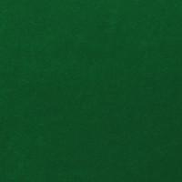 Vert n°11