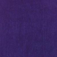 Violet n°31